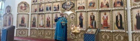 Новое звучание в храме с. Дмитровский Погост
