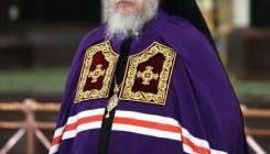 Балашихинская и Орехово-Зуевская епархия
